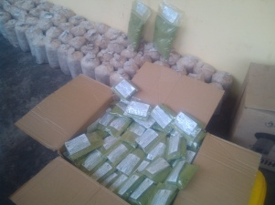 MALNUTRITION PROJECT ORGANIIZE BY PREC AND MORINGA CONNECT (1)